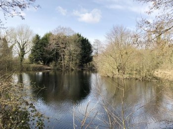 Idyllic fishery with building plot for sale in Norfolk: BR16 1RT