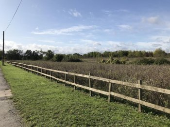 Freehold parcel of land for sale in Essex: